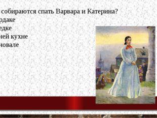 9. Где собираются спать Варвара и Катерина? на чердаке в беседке в летней кух