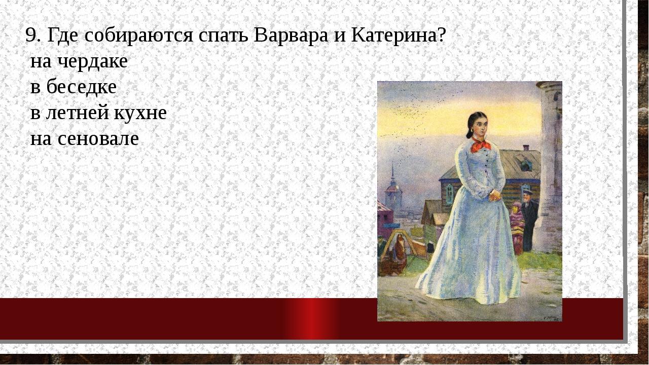 9. Где собираются спать Варвара и Катерина? на чердаке в беседке в летней кух...