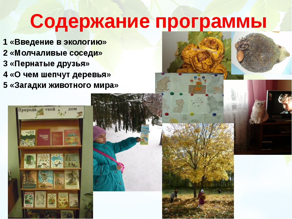 Содержание программы 1 «Введение в экологию» 2 «Молчаливые соседи» 3 «Пернаты...