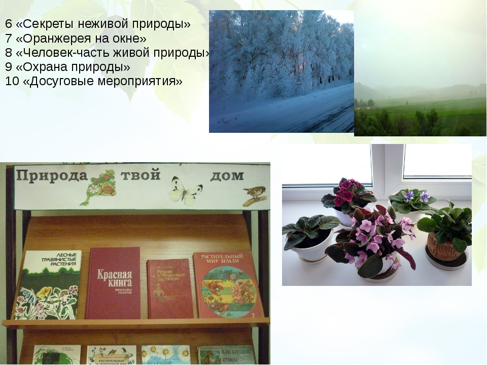 6 «Секреты неживой природы» 7 «Оранжерея на окне» 8 «Человек-часть живой прир...