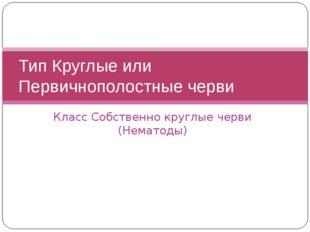 Класс Собственно круглые черви (Нематоды) Тип Круглые или Первичнополостные ч