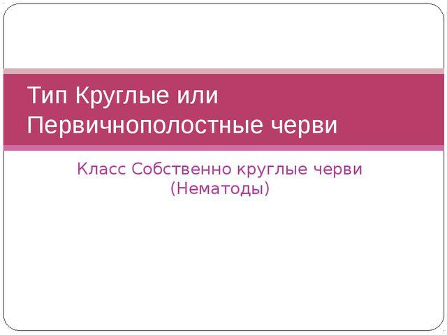 Класс Собственно круглые черви (Нематоды) Тип Круглые или Первичнополостные ч...