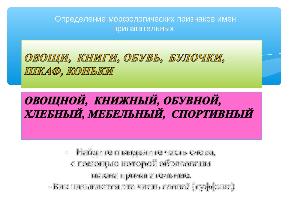 Определение морфологических признаков имен прилагательных.