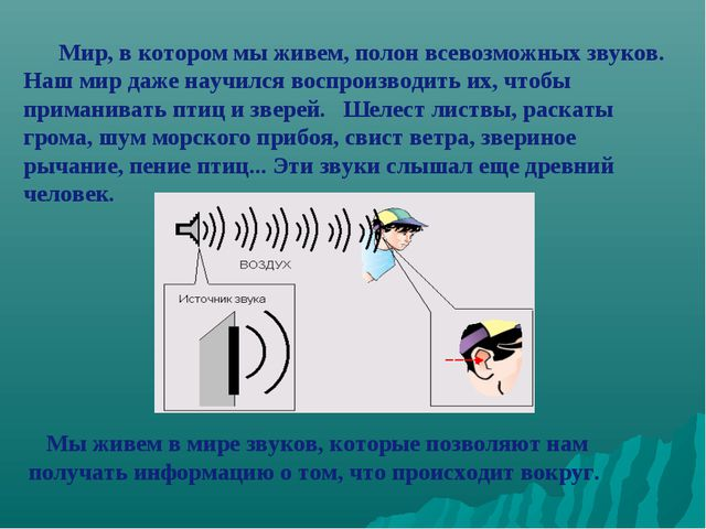 Мы живем в мире звуков, которые позволяют нам получать информацию о том, что...