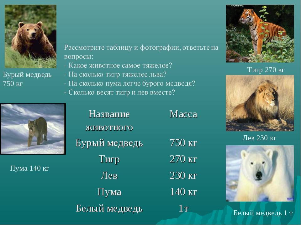 Бурый медведь 750 кг Пума 140 кг Белый медведь 1 т Лев 230 кг Тигр 270 кг Наз...