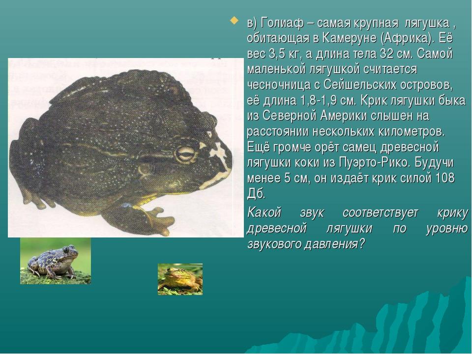 в) Голиаф – самая крупная лягушка , обитающая в Камеруне (Африка). Её вес 3,5...