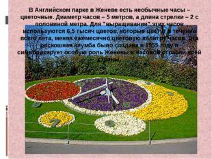 В Английском парке в Женеве есть необычные часы – цветочные. Диаметр часов –