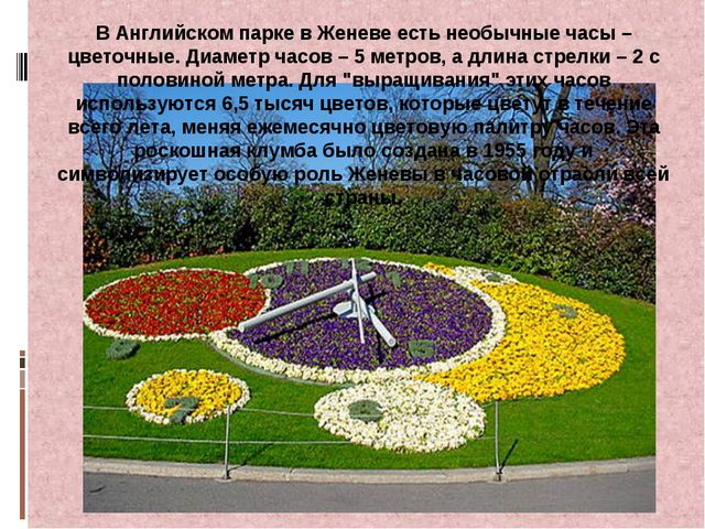 В Английском парке в Женеве есть необычные часы – цветочные. Диаметр часов –...