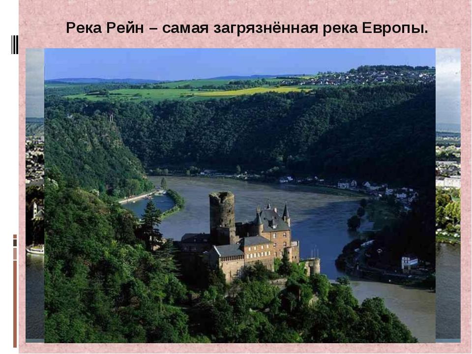 Река Рейн – самая загрязнённая река Европы.