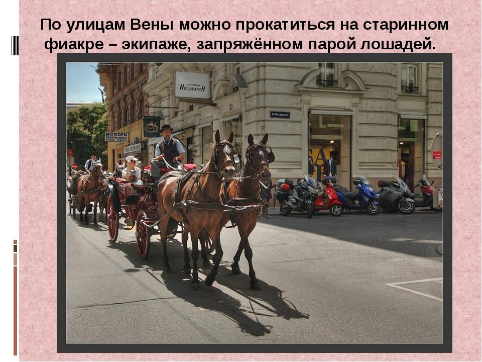 По улицам Вены можно прокатиться на старинном фиакре – экипаже, запряжённом п...
