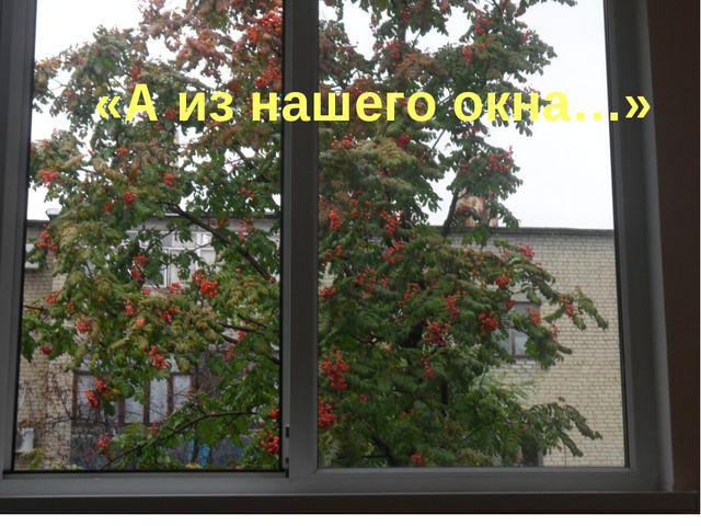 «А из нашего окна…»