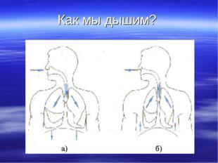 Как мы дышим?