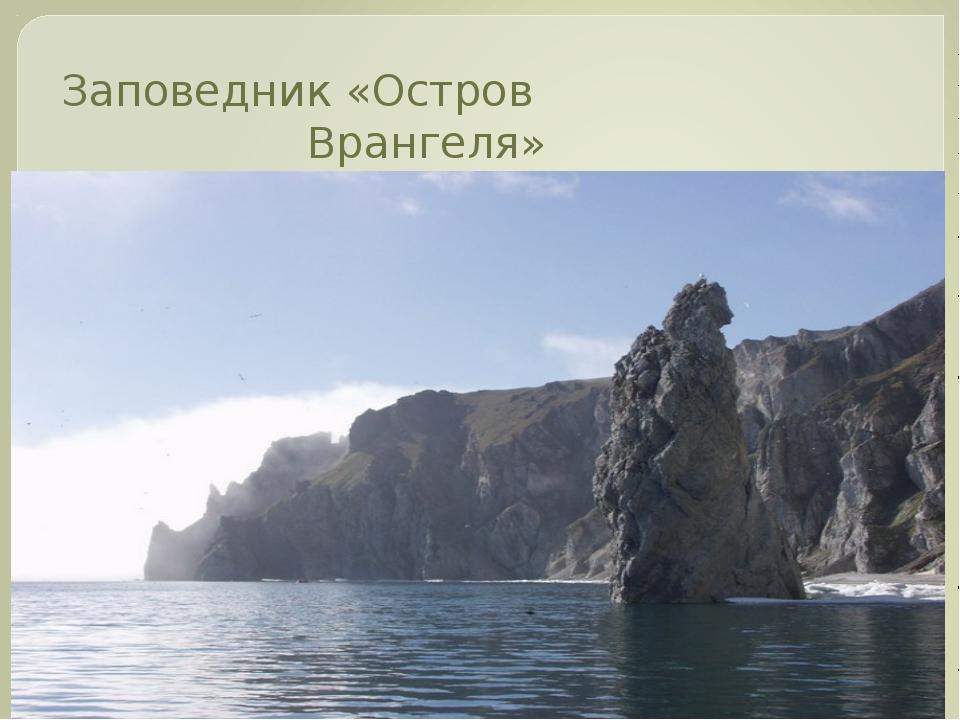 Заповедник «Остров Врангеля»