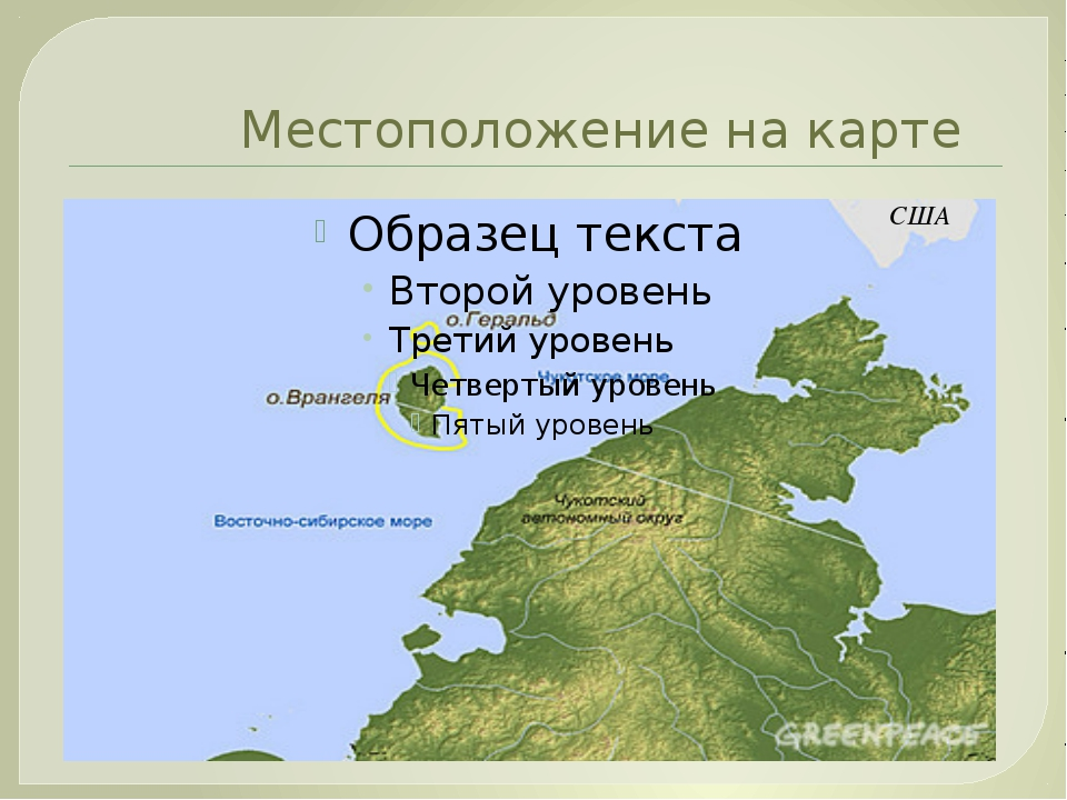 Местоположение на карте США