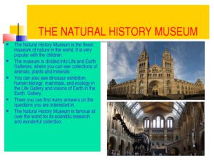 THE NATURAL HISTORY MUSEUM The Natural History Museum is the finest museum of