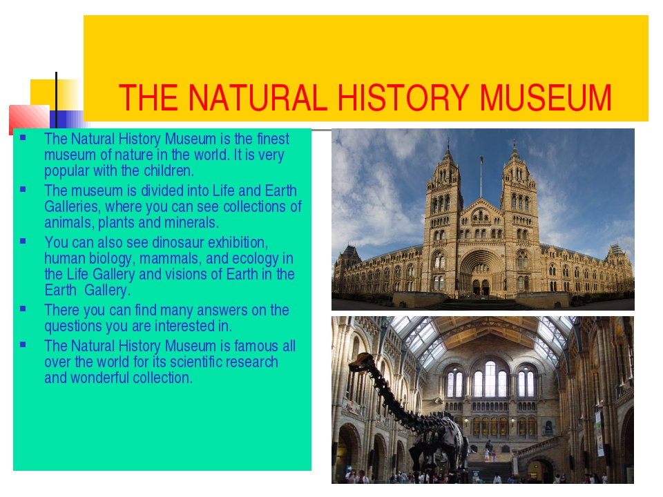 THE NATURAL HISTORY MUSEUM The Natural History Museum is the finest museum of...