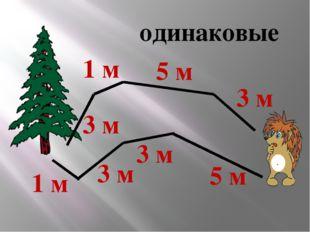 одинаковые 3 м 3 м 3 м 3 м 1 м 5 м 5 м 1 м