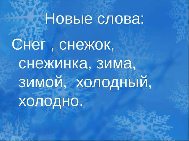 Новые слова: Снег , снежок, снежинка, зима, зимой, холодный, холодно.