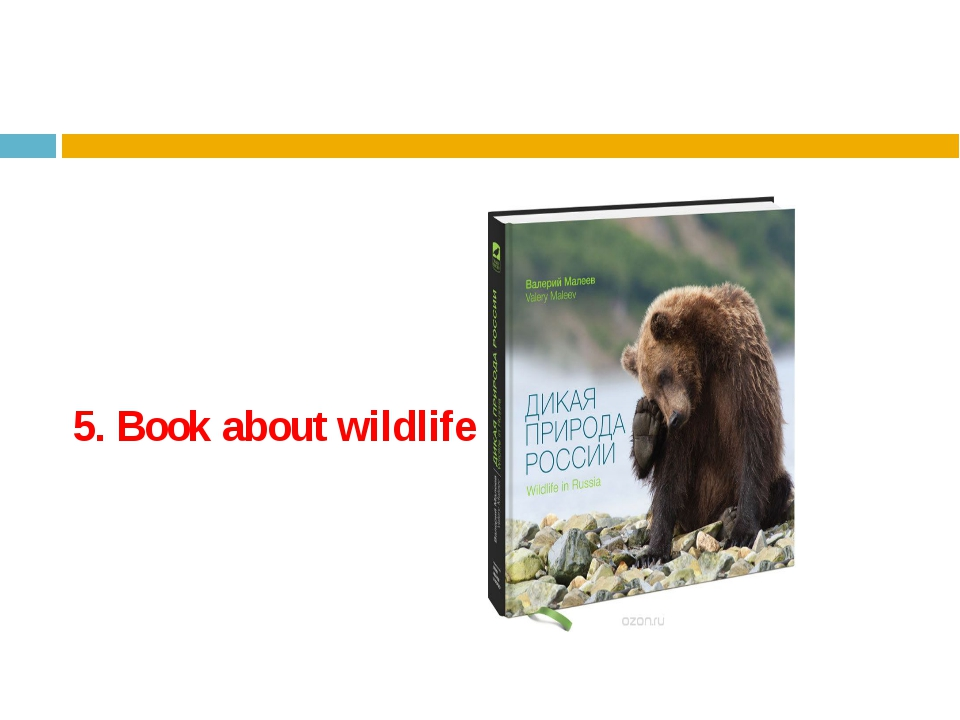 5. Book about wildlife