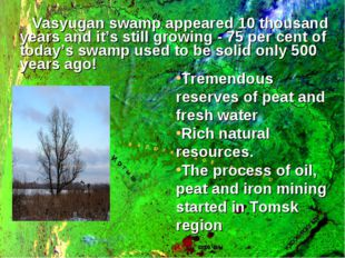 Vasyugan swamp appeared 10 thousand years and it's still growing - 75 per cen