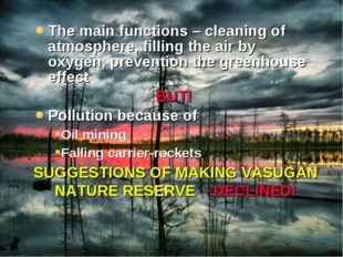 The main functions – cleaning of atmosphere, filling the air by oxygen, preve