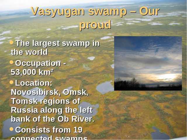 Vasyugan swamp – Our proud The largest swamp in the world Occupation - 53,000...