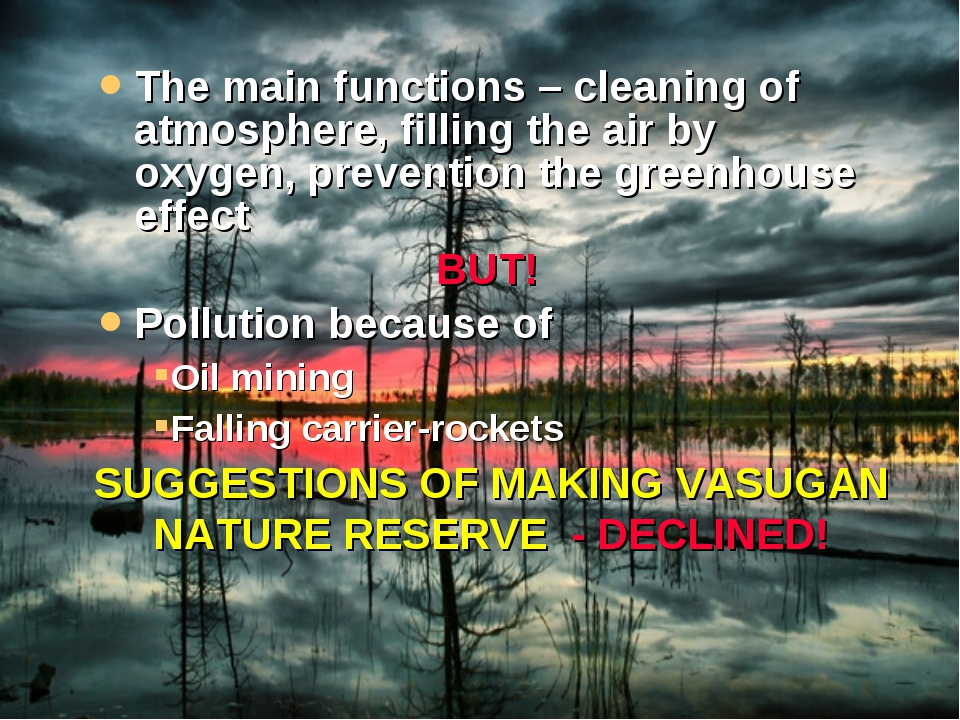 The main functions – cleaning of atmosphere, filling the air by oxygen, preve...