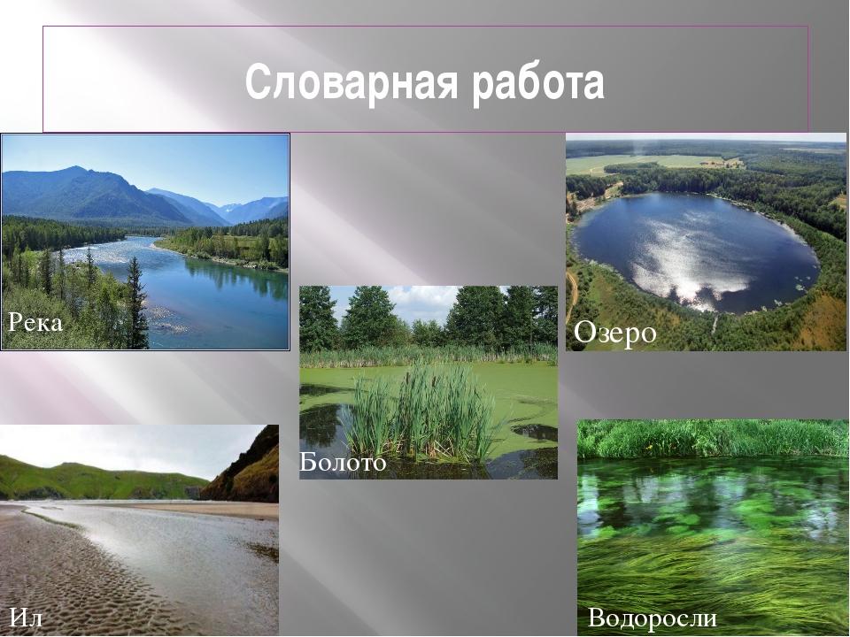 Словарная работа Озеро Река Болото Водоросли Ил