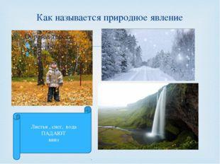 Как называется природное явление Листья , снег, вода ПАДАЮТ вниз Кузнецова Т.