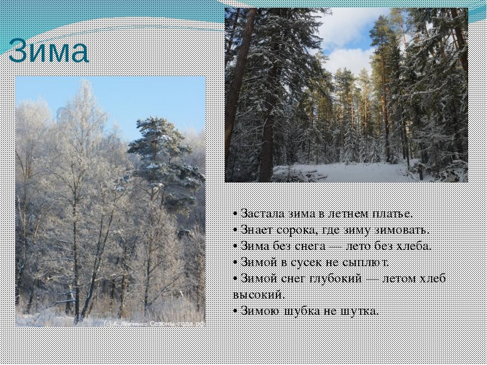 Зима • Застала зима в летнем платье. • Знает сорока, где зиму зимовать. • Зим...
