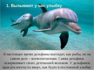 В настоящее время дельфины выглядят, как рыбы, но на самом деле – млекопитающ