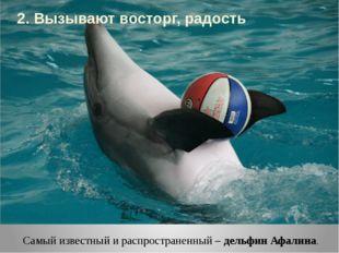 Самый известный и распространенный – дельфин Афалина. 2. Вызывают восторг, ра