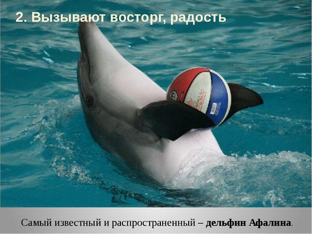 Самый известный и распространенный – дельфин Афалина. 2. Вызывают восторг, ра...