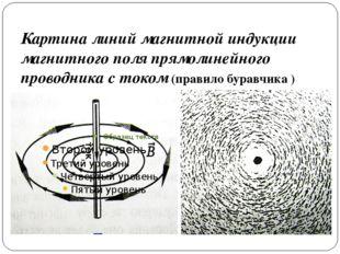 Картина линий магнитной индукции магнитного поля прямолинейного проводника с