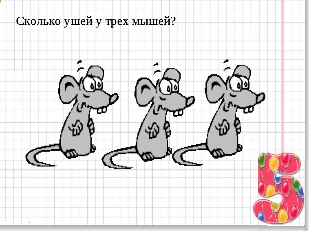 Сколько ушей у трех мышей?