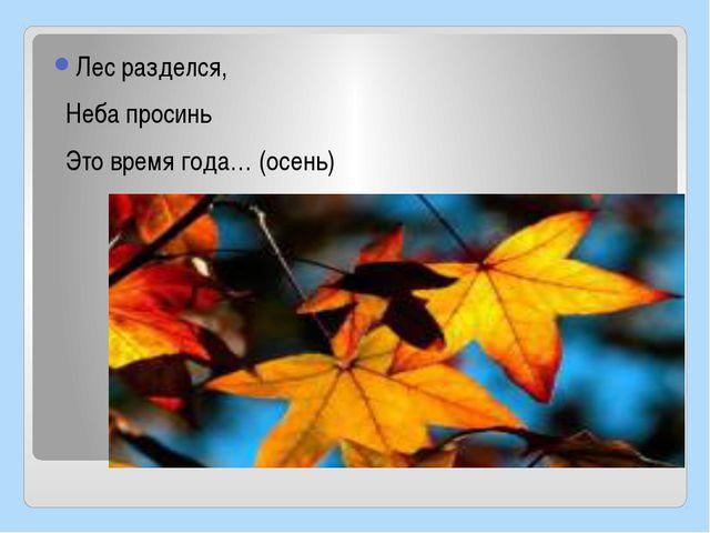 Лес разделся, Неба просинь Это время года… (осень)