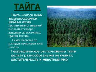 ТАЙГА Географическое расположение тайги делает разнообразными ее климат, рас