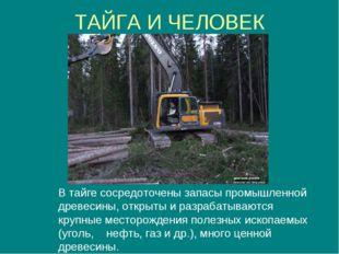 ТАЙГА И ЧЕЛОВЕК В тайге сосредоточены запасы промышленной древесины, открыты