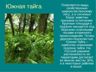 Южная тайга Появляются виды, свойственные широколиственному лесу, а в сосновы