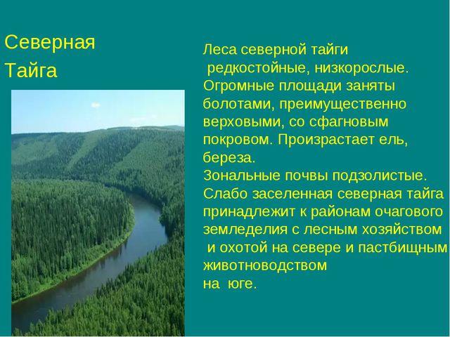 Северная Тайга Леса северной тайги редкостойные, низкорослые. Огромные площад...
