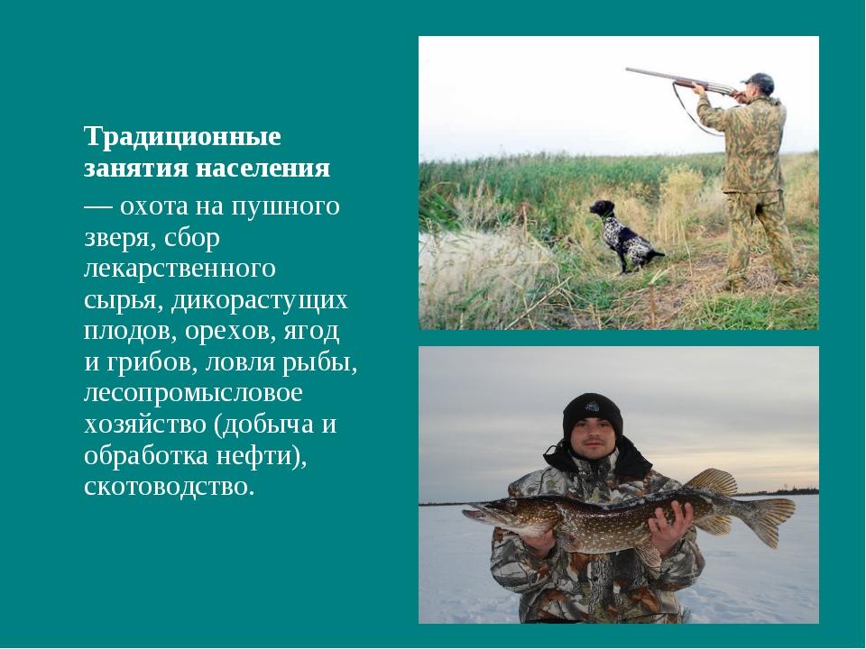 Традиционные занятия населения — охота на пушного зверя, сбор лекарственног...