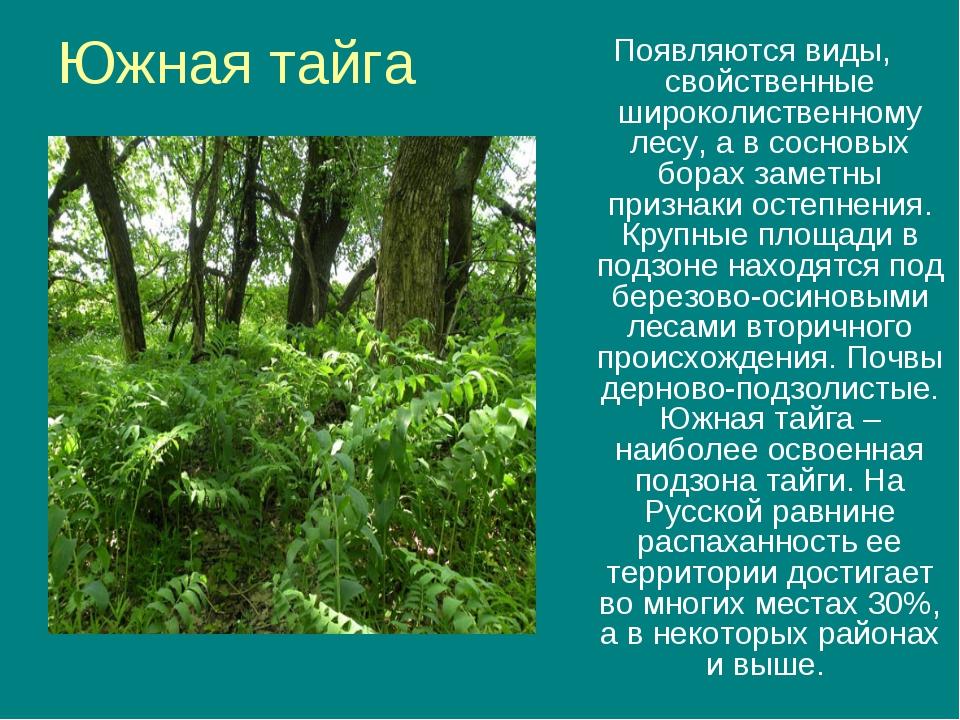Южная тайга Появляются виды, свойственные широколиственному лесу, а в сосновы...