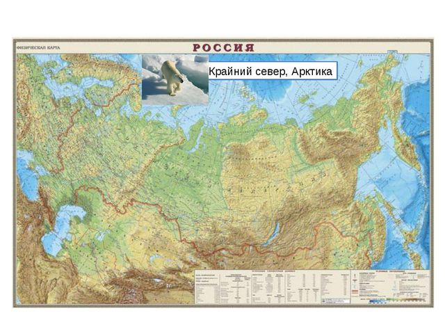 Крайний север, Арктика