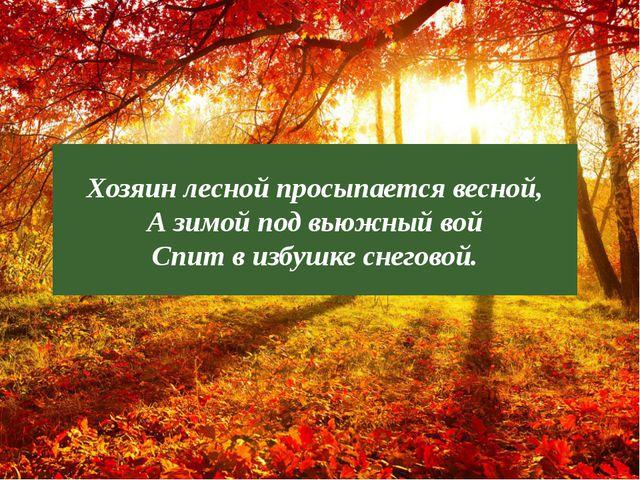? Хозяин лесной просыпается весной, А зимой под вьюжный вой Спит в избушке сн...