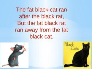 The fat black cat ran after the black rat, But the fat black rat ran away f
