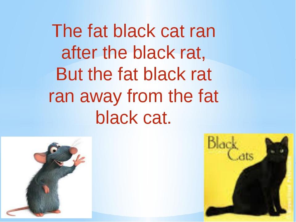 The fat black cat ran after the black rat, But the fat black rat ran away f...