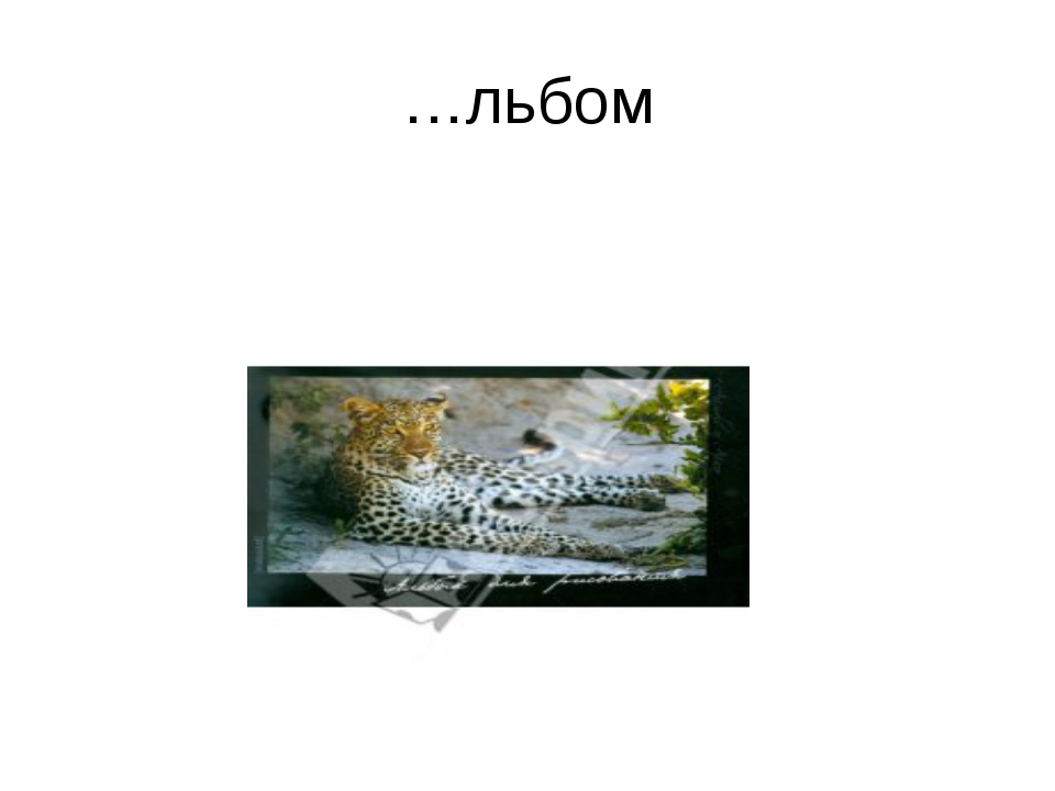 …льбом