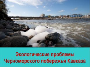 Экологические проблемы Черноморского побережья Кавказа