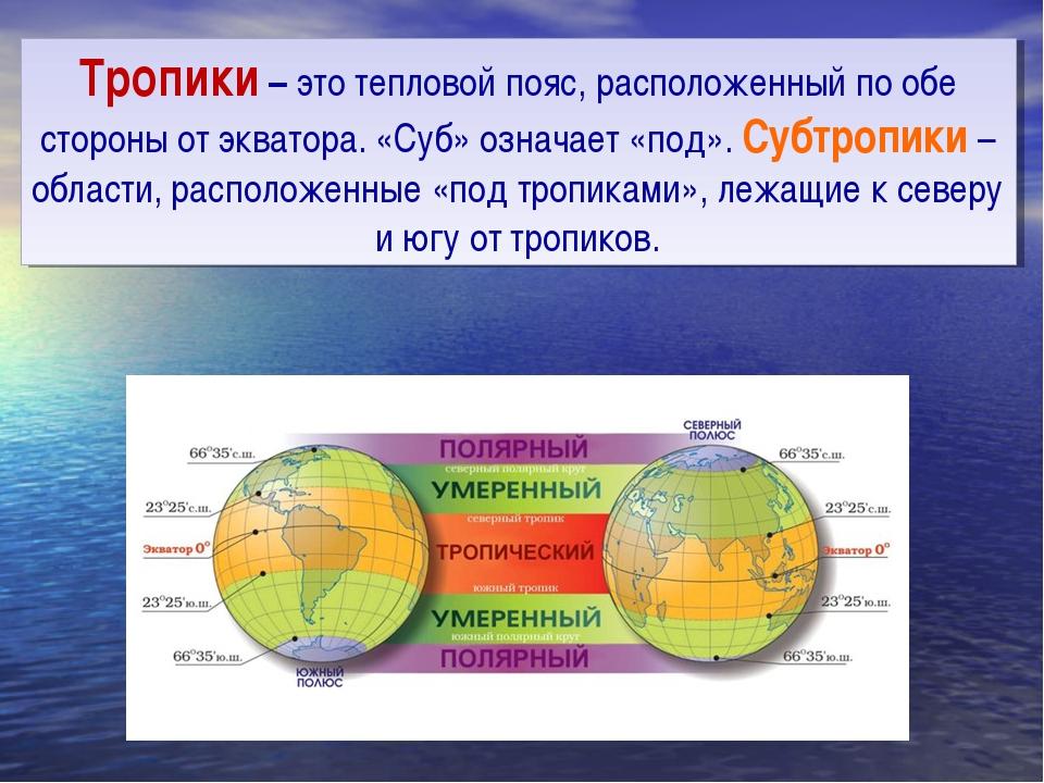 Тропики – это тепловой пояс, расположенный по обе стороны от экватора. «Суб»...
