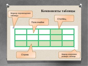 Компоненты таблицы Столбец Строка Поле ячейки Маркер перемещения таблицы Марк